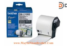 Nhan giay Brother DK-11202_62x100mmx300